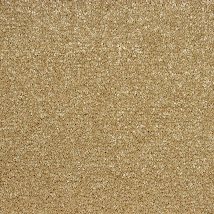 Abingdon Carpets Stainfree Soft Whisper Honey