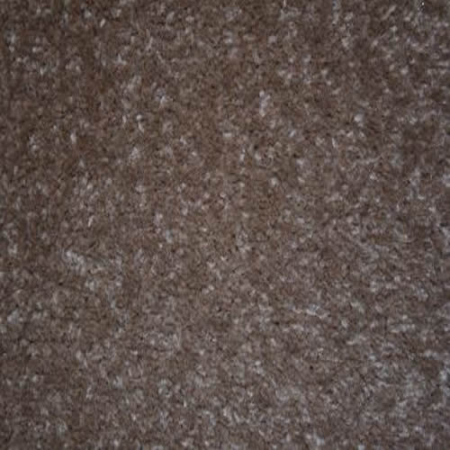 Regency carefree carpets cabaret twist leather for Leather flooring cost