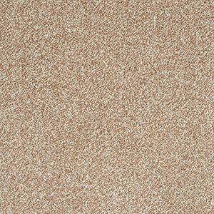 Abingdon Carpets Stainfree Arena Plus Malt