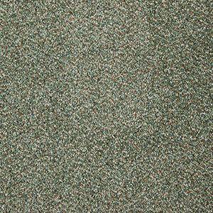 Abingdon Carpets Stainfree Berber Deluxe Fern