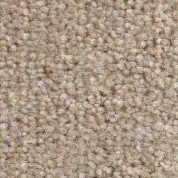 Jhs Commercial Carpet Housebuilder Bromley Super Buff