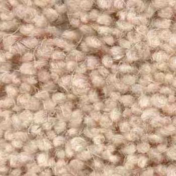 Jhs Commercial Carpet Housebuilder Haywood Twist Super